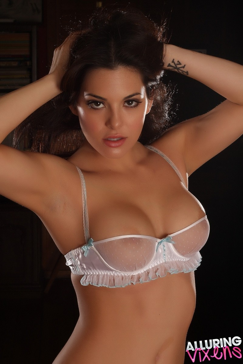 Understand you. Sexy brunette sheer lingerie phrase